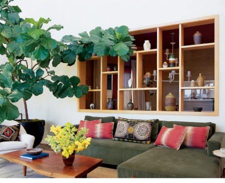 Trồng cây trong nhà – vừa đẹp vừa tiện ích 3