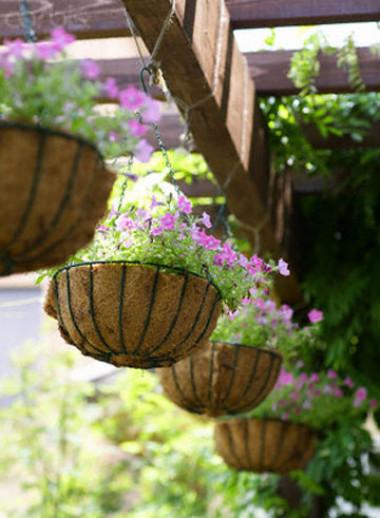 Bạn có thể tự tạo hoa viên cho ngôi nhà của mình