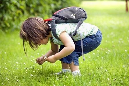 Từ 2 - 3 tuổi, trẻ có nhu cầu giao tiếp mạnh mẽ và rất tò mò về thế giới xung quanh.