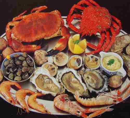 Phụ nữ mang thai nên ăn khoảng 340gr hải sản mỗi tuần và  không nên ăn gỏi hải sản.