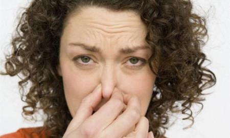 Bạn sẽ không phải sợ những mùi khó chịu trong phòng nữa