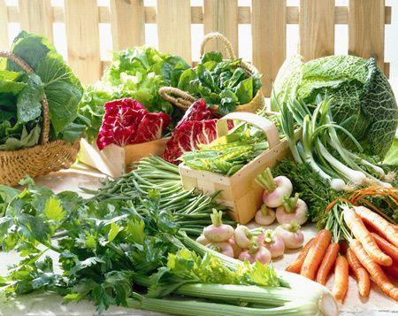 Cần bảo quản thực phẩm đúng cách để bảo vệ sức khỏe cho gia đình bạn