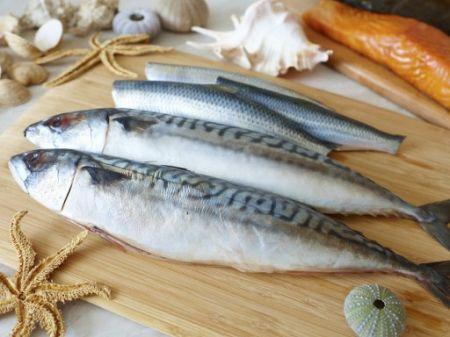Cá, tôm ở đồng thường chắc thịt và tươi ngon hơn