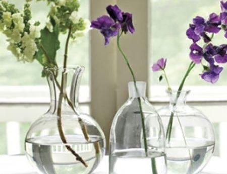 Hãy thay nước cho hoa mỗi ngày vào lúc sáng sớm và chiều tối.