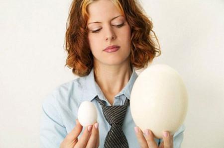 Trứng ngỗng chỉ đắt vì ít có chứ không phải vì có công dụng đặc biệt gì.