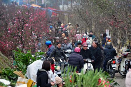 Chợ hoa Tết ở Tây Hồ