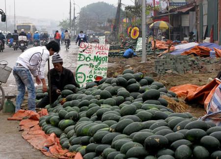 Dưa hấu giá rẻ bán trên đường Hồ Tùng Mậu