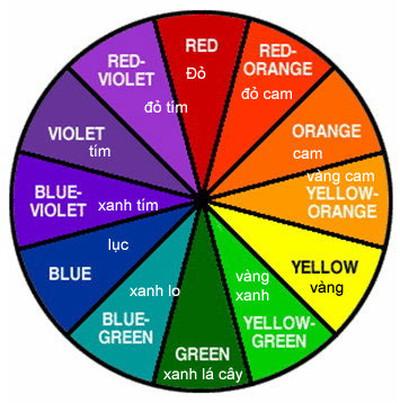 Vòng tròn màu cơ bản.