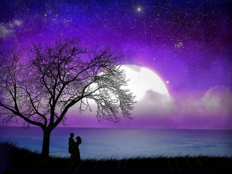 Ảnh đẹp về tình yêu lãng mạng 11