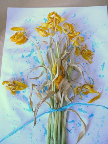 Độc đáo với tranh hoa khô