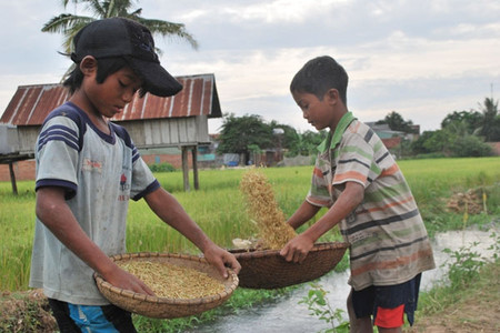 Trẻ nông thôn tiếp xúc với môi trường nhiều hơn