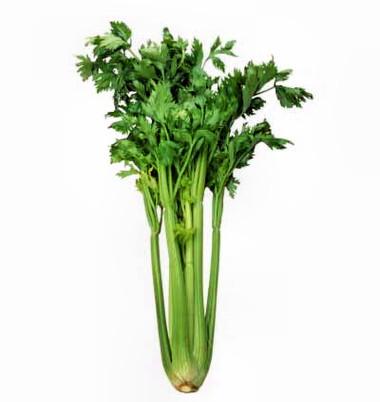 Trong cần tây có các chất giúp tăng lực và trị bệnh thấp khớp.