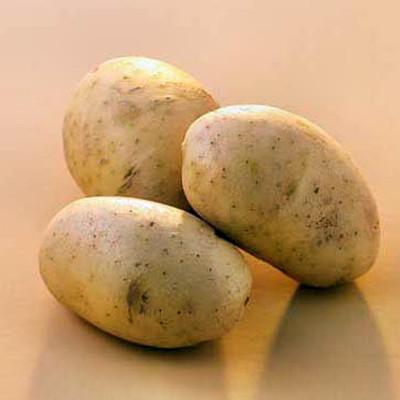 Ăn nhiều vỏ khoai tây dẫn đến nhiễm độc mãn tính.