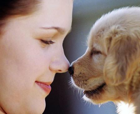 Chị dành tình cảm quan tâm đến con thú cưng mà quen hết cả chồng con.