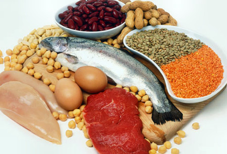 Thực phẩm có hàm lượng protein cao không hẳn có hại cho thận.
