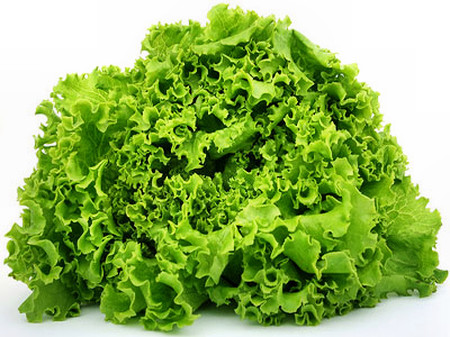 Cải lá xoăn rất bổ dưỡng, giàu vitamin và khoáng chất quan trọng.
