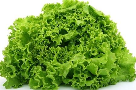 Rau diếp xoăn là loại thảo dược có tác dụng bồi bổ cơ thể.