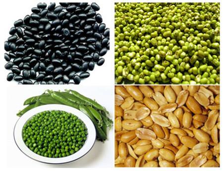Các loại đậu giúp mạch máu giữ được tính đàn hồi, không bị lão hoá, làm tăng sức đề kháng của cơ thể.