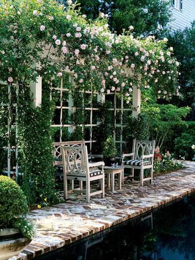 Hoa hồng trang trí nơi thư giãn 2
