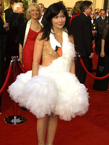 9. Chiếc váy của Bjork 1