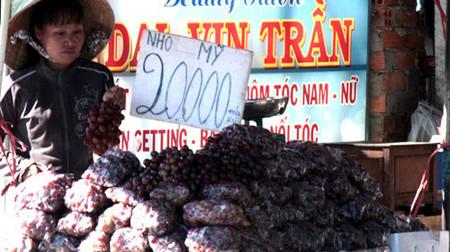 Thực phẩm chứa dư lượng chất bảo quản độc hại là một trong những nguyên nhân gây nên nhiều bệnh ung thư tại Việt Nam.