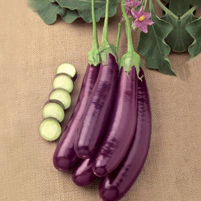 Trong vỏ của cà tím giàu chất chống oxy hóa, cũng là nơi tập trung nhiều vitamin P.