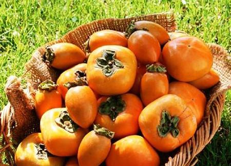 Bột làm chín trái cây an toàn cho sức khỏe.