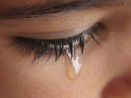 Em gái tôi suốt ngày cũng chỉ biết khóc.