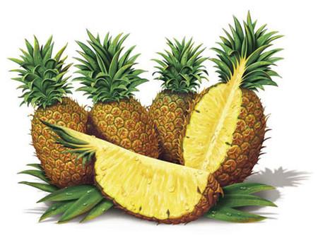 Những trái cây có công dụng phòng và chữa bệnh - Sức Khỏe - Chăm sóc sức khỏe - Kiến thức y học - Sức khỏe gia đình
