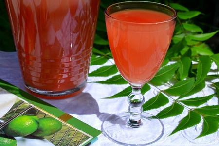 Siro hoa quả giàu vitamin giúp bạn giải nhiệt tốt và bù được cho bạn chút lượng bột cùng lượng đường cần thiết!