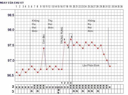 Biểu đồ nhiệt độ trong một chu kỳ kinh nguyệt.