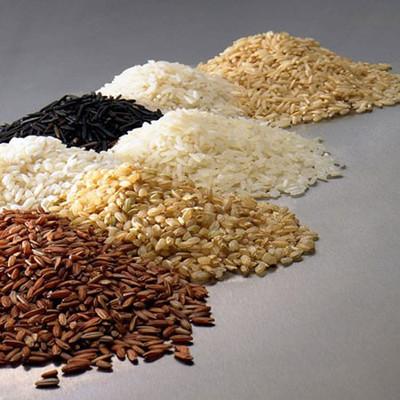1. Gạo, lúa mì, và yến mạch 1