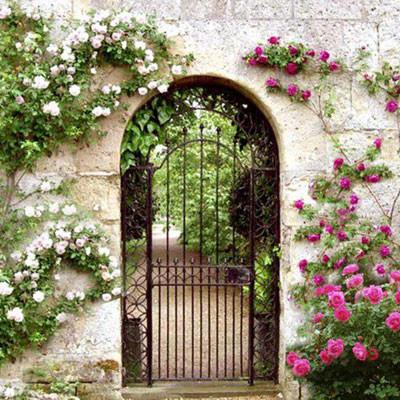 Nhà ở có hướng cổng tốt sẽ đón được khí tốt vào nhà.