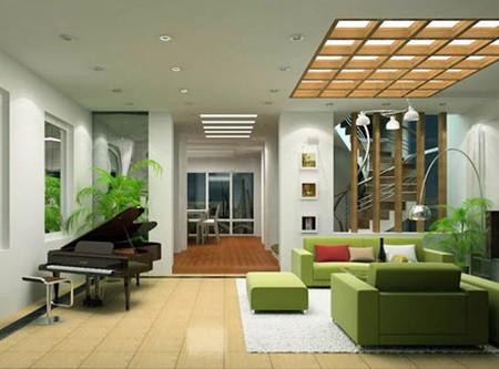 Trồng cây xanh trong nội thất sẽ rất tốt, nếu bạn chăm sóc chúng cẩn thận.