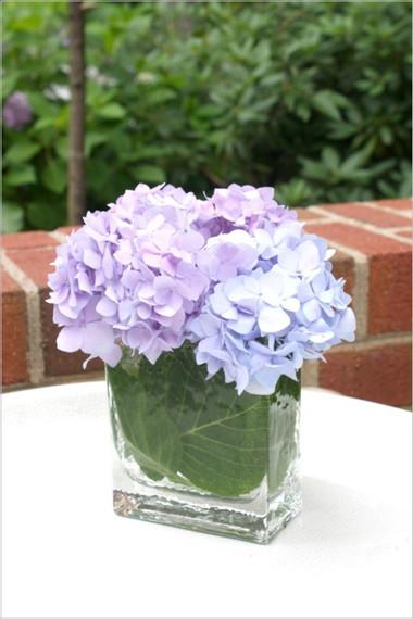2. Cách cắm hoa cẩm tú cầu theo phong cách hiện đại 1