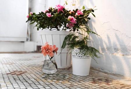 Mang sự lãng mạn đến không gian nhà bạn với cách cắm hoa độc đáo 13