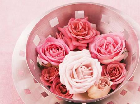 Hoa hồng: 1