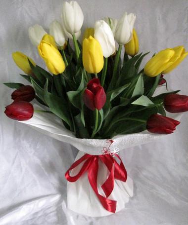 Tulip: Loài hoa mạnh mẽ 1
