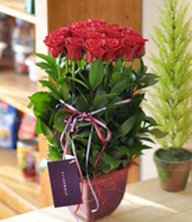 Những mẫu lẵng hoa hồng đẹp lung linh tặng nàng nhân ngày 20/10 4