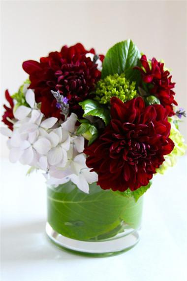 Phòng khách thêm rực rỡ với hoa thược dược - hoa của mùa Đông 3