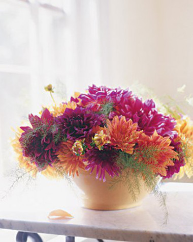 Phòng khách thêm rực rỡ với hoa thược dược - hoa của mùa Đông 5