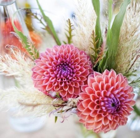 Phòng khách thêm rực rỡ với hoa thược dược - hoa của mùa Đông 8