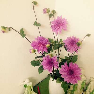 Phòng khách thêm rực rỡ với hoa thược dược - hoa của mùa Đông 1