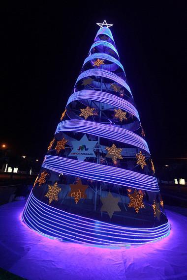 Tưng bừng đón Giáng sinh với hình ảnh cây thông  9