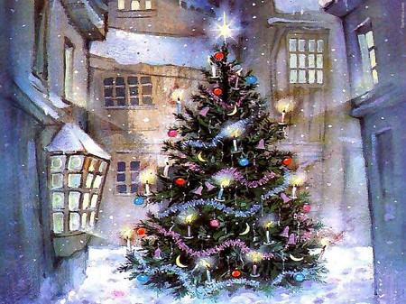 Chọn cây thông trang trí đón mừng Giáng sinh 1