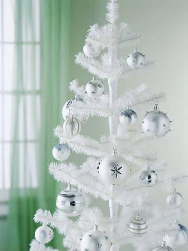 Chọn cây thông trang trí đón mừng Giáng sinh 13
