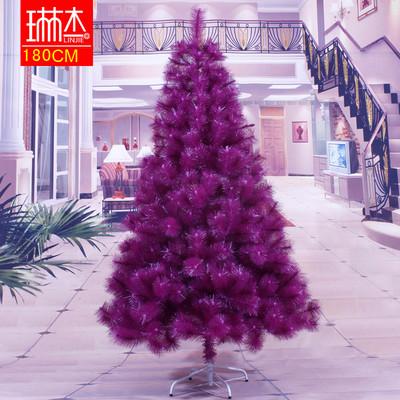 Chọn cây thông trang trí đón mừng Giáng sinh 15