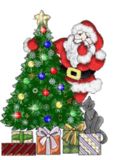 Tưng bừng đón Giáng sinh với hình ảnh cây thông  1
