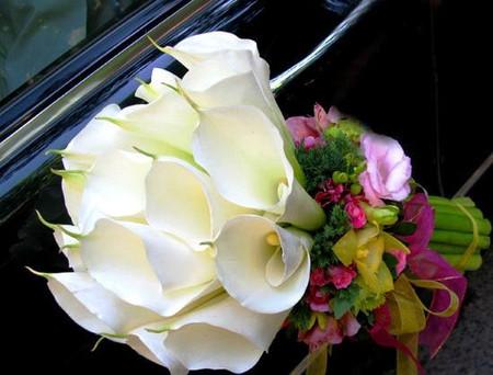 Vẻ đẹp thanh khiết của hoa Rum cho cô dâu đẹp rạng ngời trong ngày cưới 8