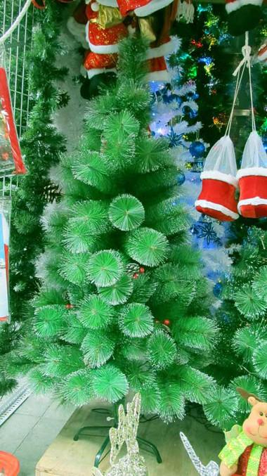 Tưng bừng đón Giáng sinh với hình ảnh cây thông  3
